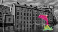 HiQ blir digitaliseringspartner åt Norrköpings kommun