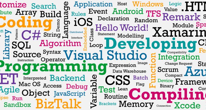 Nuläge och framtida behov inom mjukvaruutveckling