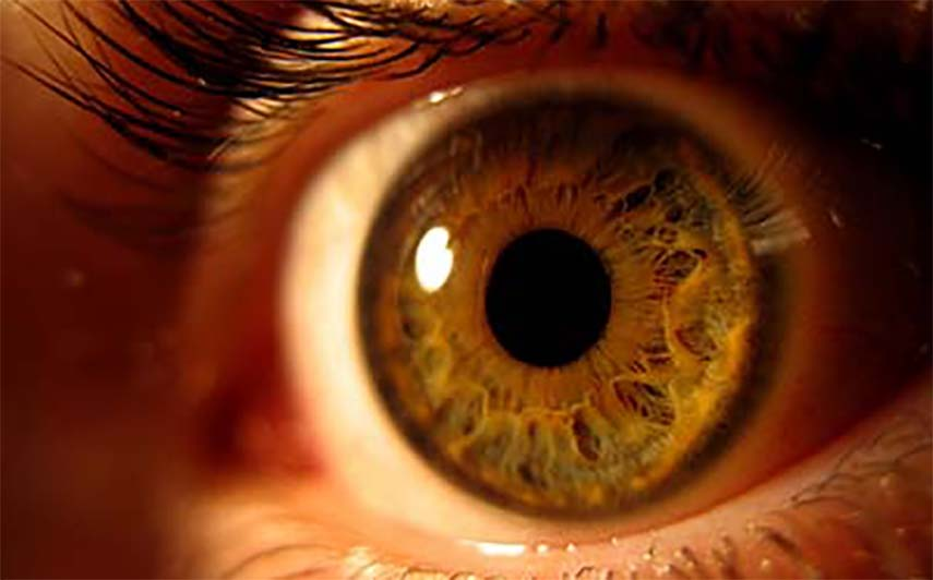 Eyes could reveal heart attack risk