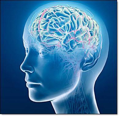Hjärnsmarta Kattegattgymnasiet uppmärksammas nationellt