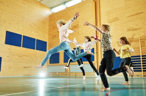 """Den sjunde Dans i skolan-biennalen """"Dans, hälsa och lärande"""""""