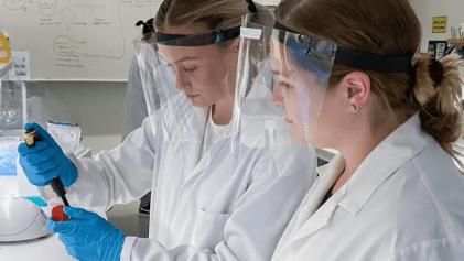 Gula bananflugor kopplar Högskolan till årets nobelpris i kemi 2