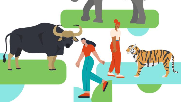 TikTok i nytt samarbete för att motverka handel med vilda djur