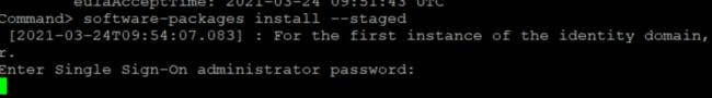 SSO Password