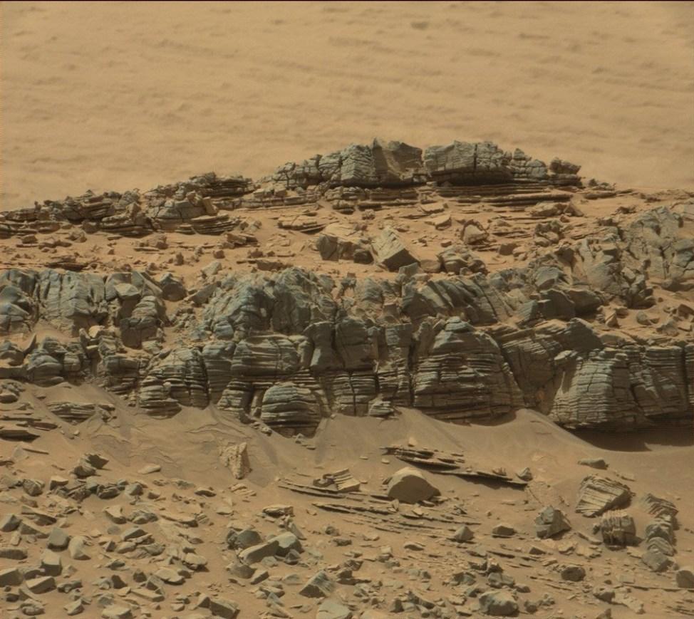 火星に写るカニ