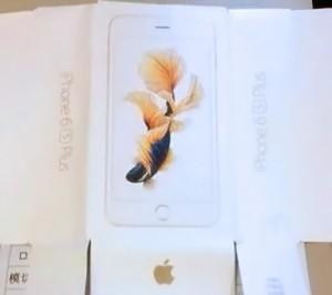 iphone6snishikigoi
