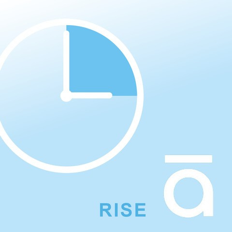Articulate Rise, timebasis, IT Univers