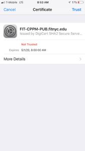 iPhone Accept Certificate