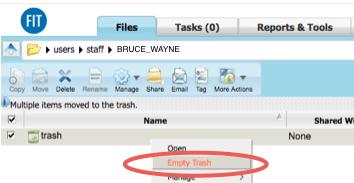 WebFiles Empty Trash