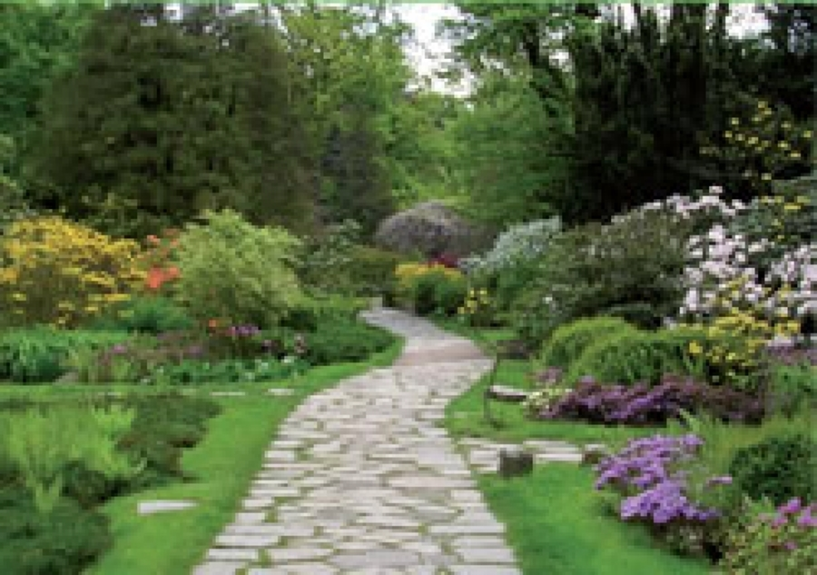 Foto Giardino Fiorito di Filippo Parisi Giardinaggio