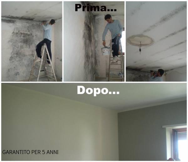 Posso rifinire le pareti della cucina con la cera  habitissimo
