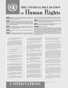 La Dichiarazione Universale dei Diritti Umani ha fatto nascere diverse leggi e trattati sui diritti umani in tutto il mondo.