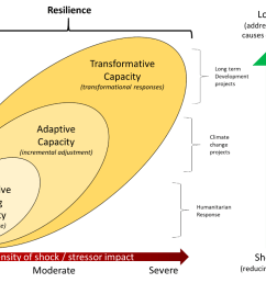 diagram 2 1 asp srsp in the context of resilience and the development continuum [ 1378 x 776 Pixel ]
