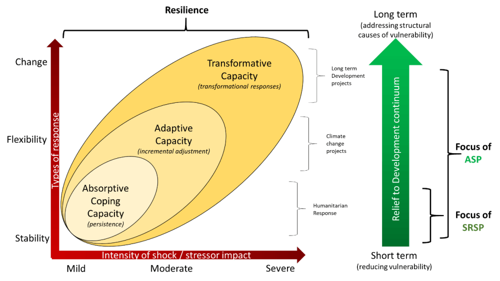 medium resolution of diagram 2 1 asp srsp in the context of resilience and the development continuum