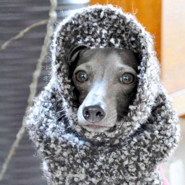 毛糸って暖かいね。