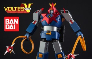 VOLTES-40th-7482slide