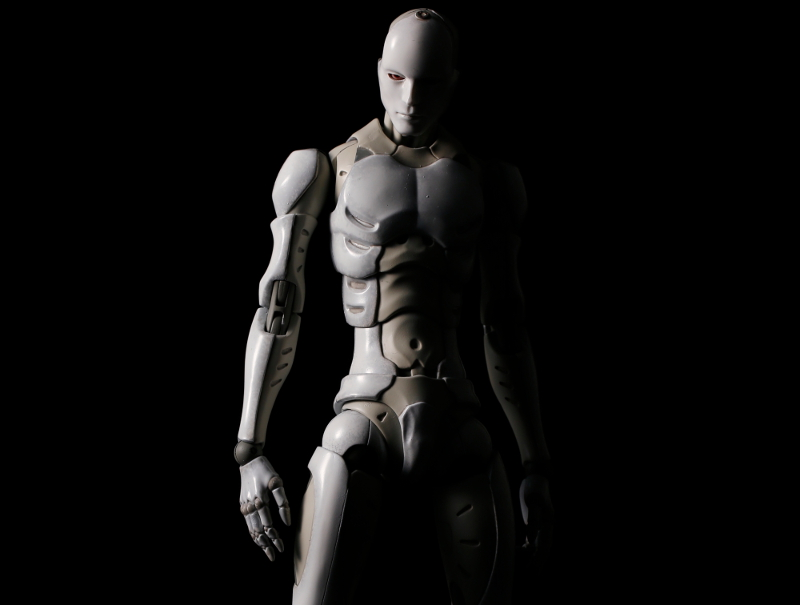 Synthetic_Human_1000Toys (0)