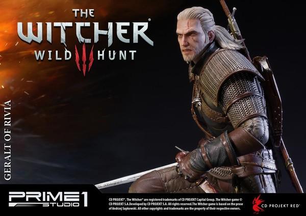 Geralt_P1S (5)
