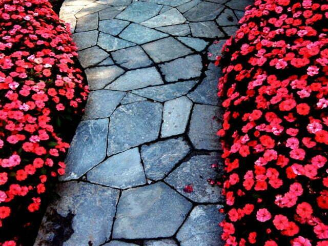 Verbania - sentiero costeggiato di fiori a Villa Taranto
