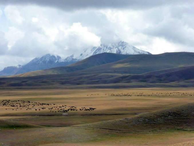 Горный пейзаж Киргизтт 3