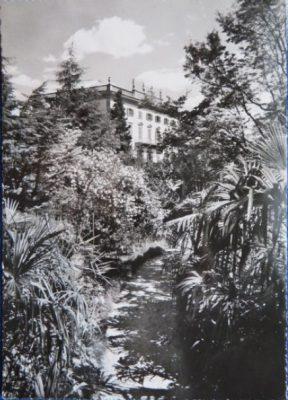 Isole_di_Brissago._Parco_botanico_del_Cantone_Ticino._437_detail
