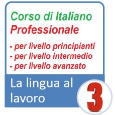 3 corso professionale