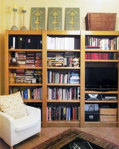 Book case/entertainment center