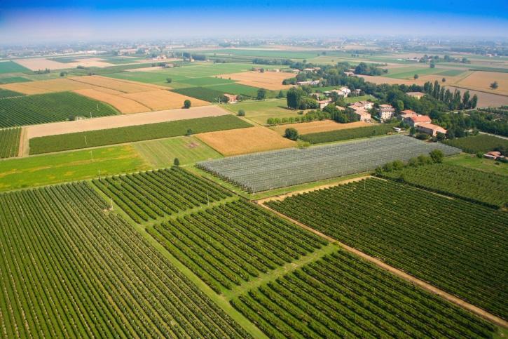 Agriculture in Emilia Romagna