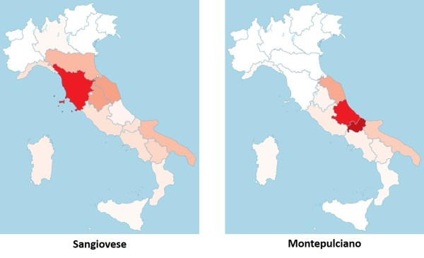 Sangiovese and Montepulciano concentrations