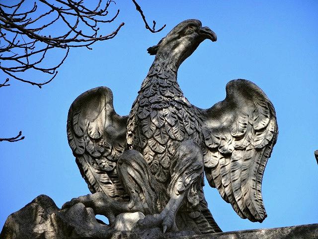 ウルビーノの鷲