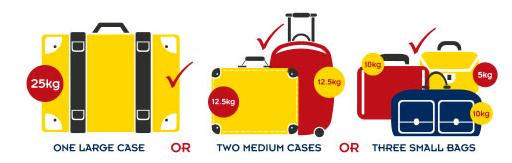 luggage megabus
