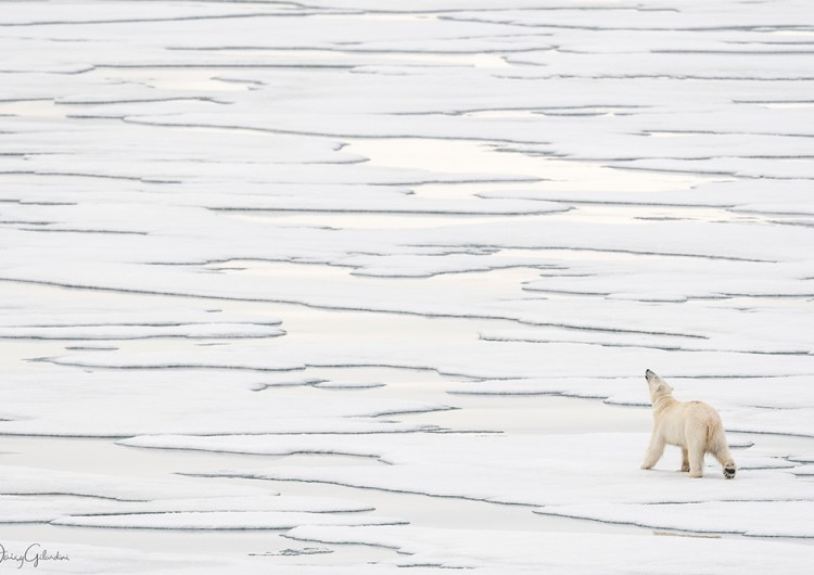 LuganoPhotoDays 2017: attenzione ai cambiamenti climatici