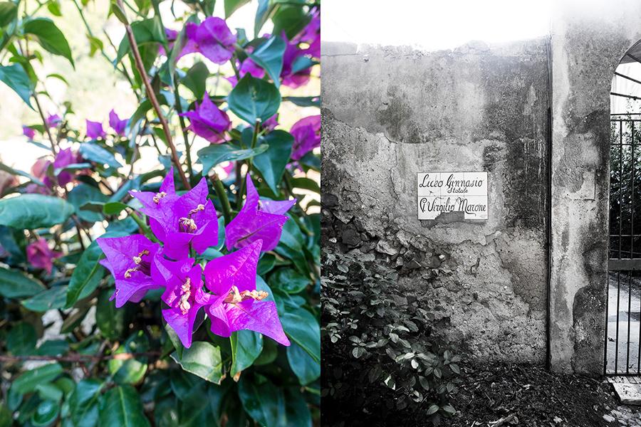 flowers-sign-capri-italy on my mind