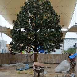 pavimenti esterni in travertino e albero expo 2015