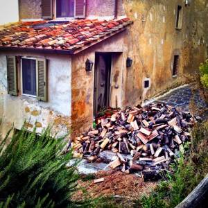 Four thousand pounds of firewood for my wood-burning stove have just been delivered.