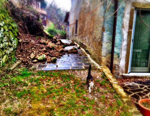 Three days of non-stop rain caused a breach in a very old wall next to our house.