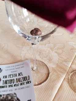 San Giovanni d'Asso, Calice con Tartufo Marzuolo in Degustazione