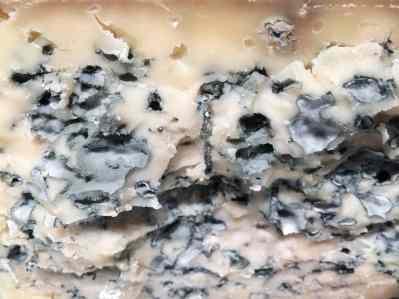 Formaggio tipo bleu, erborinato