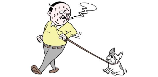 犬と散歩するおっさん