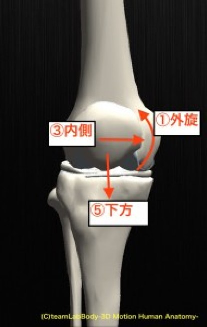 膝蓋骨 屈曲 前