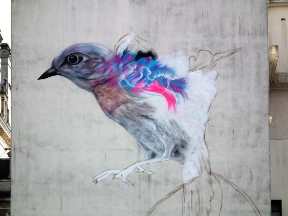 L'oiseau vannetais de L7m