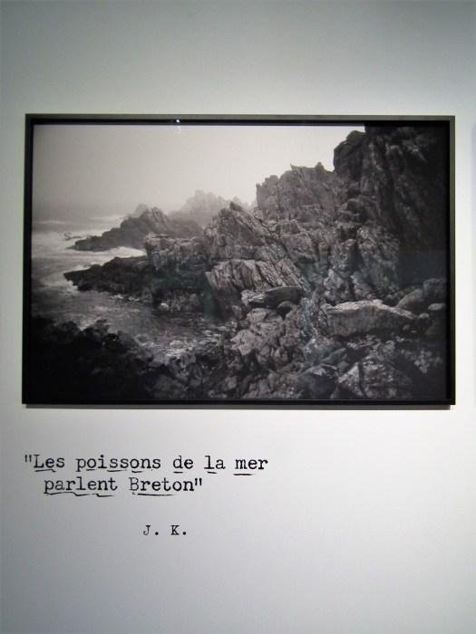 René Tanguy 8
