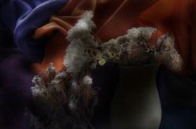 Dried Flowers and Polar Wools, 2014, tirage argentique, format variable, éd. de 5 + 2 EA.