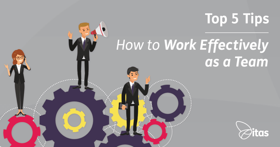 working effectively as a team To work effectively with others, it is important that you:  of others working in a  manner consistent with team goals ensuring personal goals do.