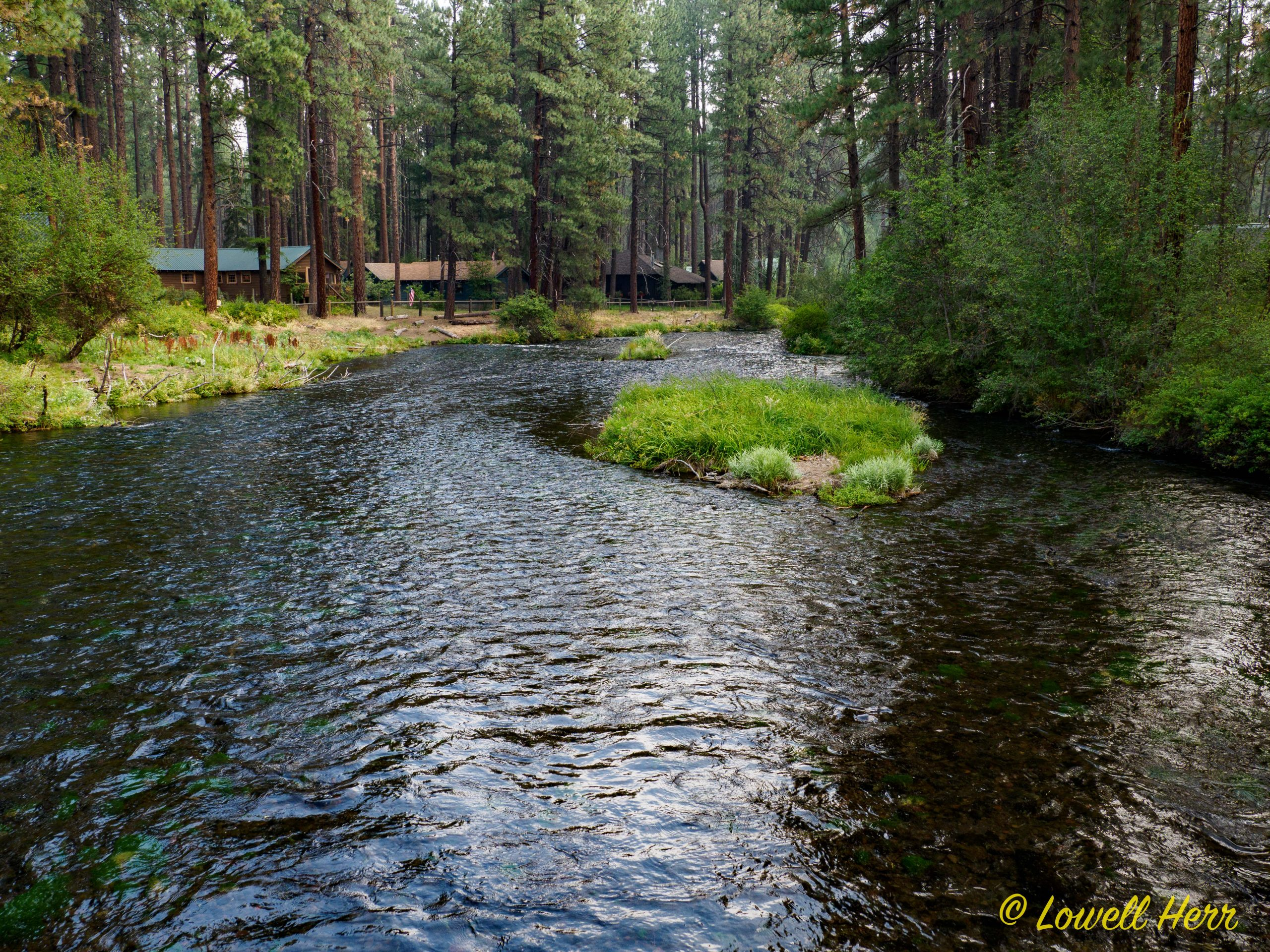 Metolius River and Several Music Recommendations 3