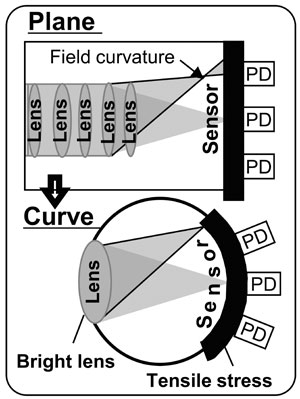 curvediagramhalfcolumn-1402453918753