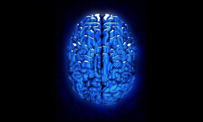 brain-upgrade-digital-colloid