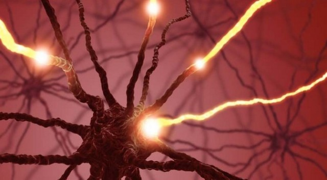 Neuron-Stim-640x353