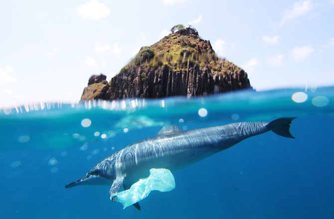 dnews-files-2016-01-fish-oceans-670-jpg