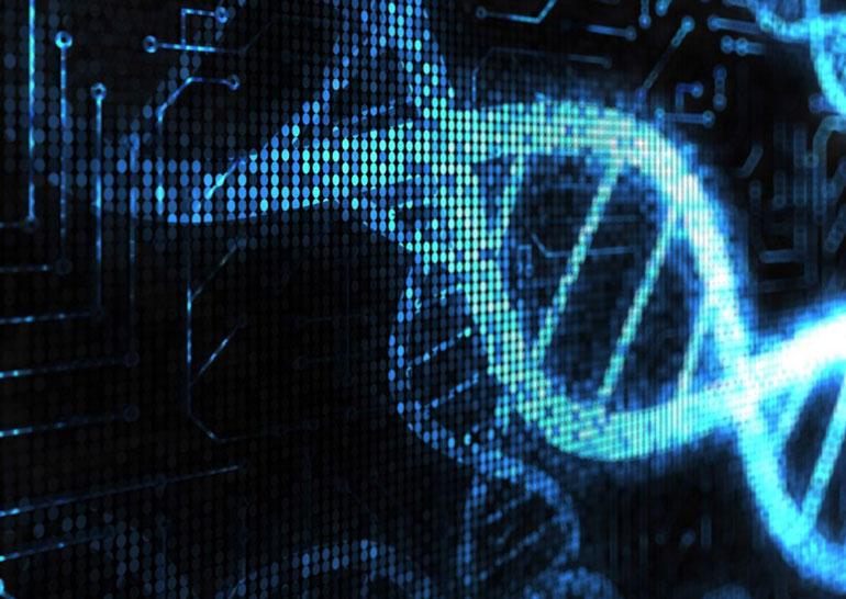 Биоинженеры разработали способ борьбы с раком путём программирования ДНК бактерий